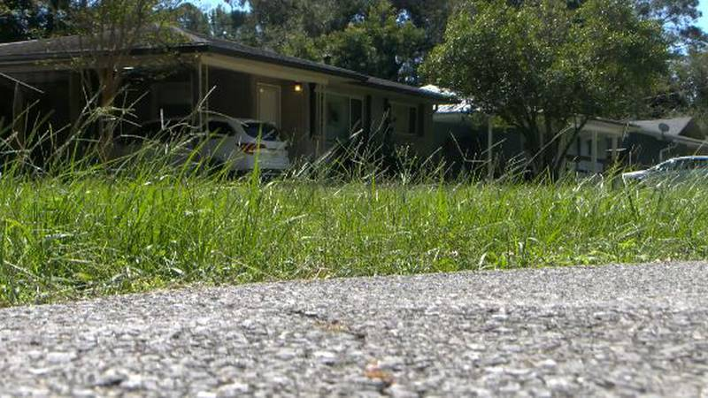 A community in St. Francisville is in shock after a suspected murder-suicide