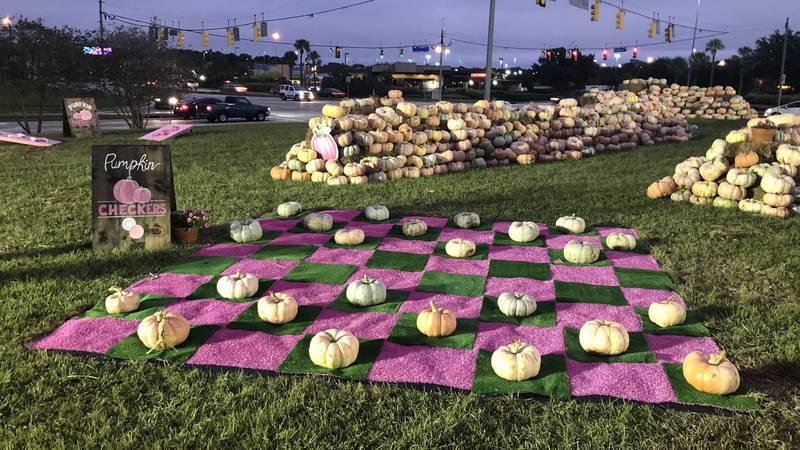 Baton Rouge General brings back Pop Up Pink Pumpkin Patch