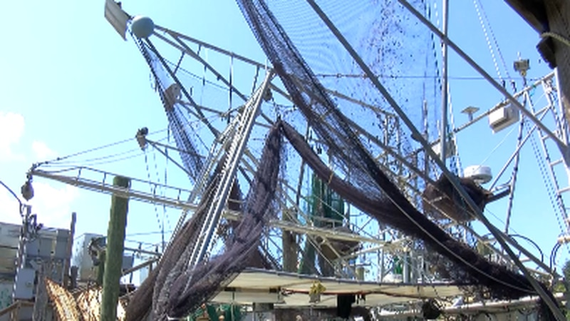 Shrimpers struggle with high loss since Bonnet Carre Spillway opening