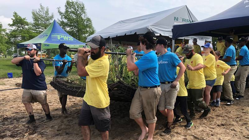 A group of volunteers moves a floating islands mat, made of material from recycled plastic...