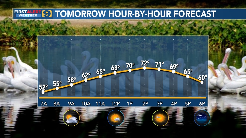 Monday's hour-by-hour forecast