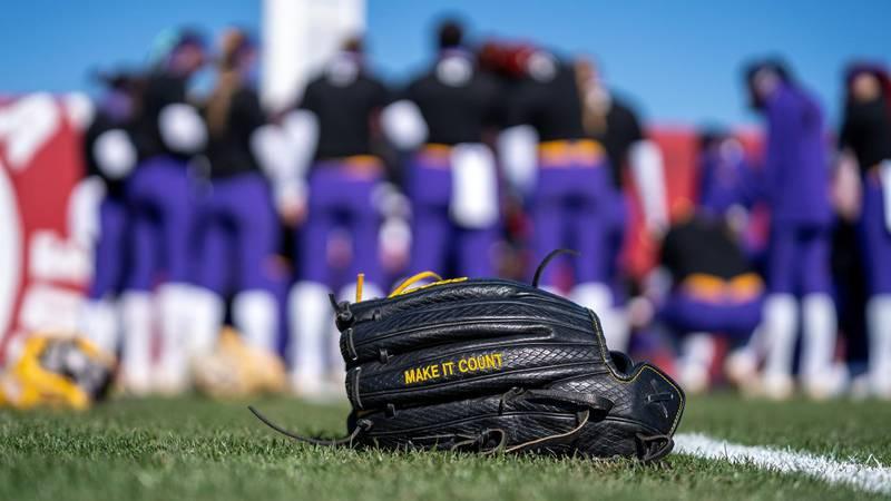 LSU softball glove