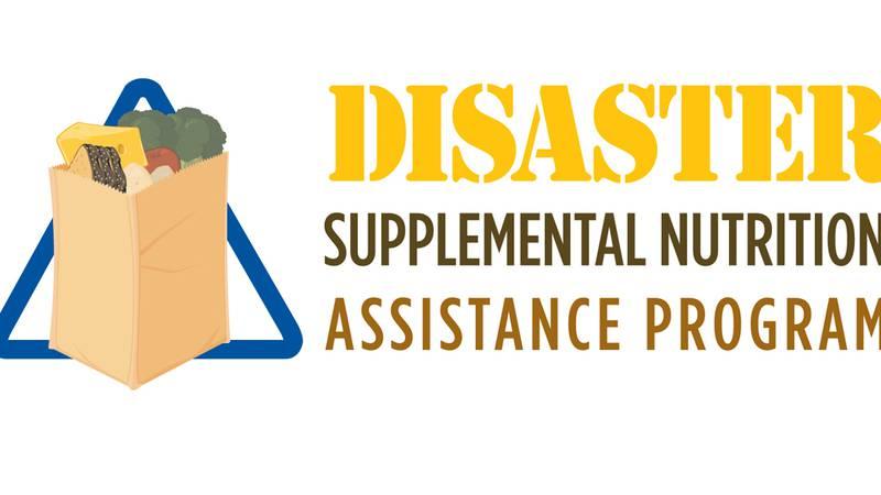 DSNAP Logo