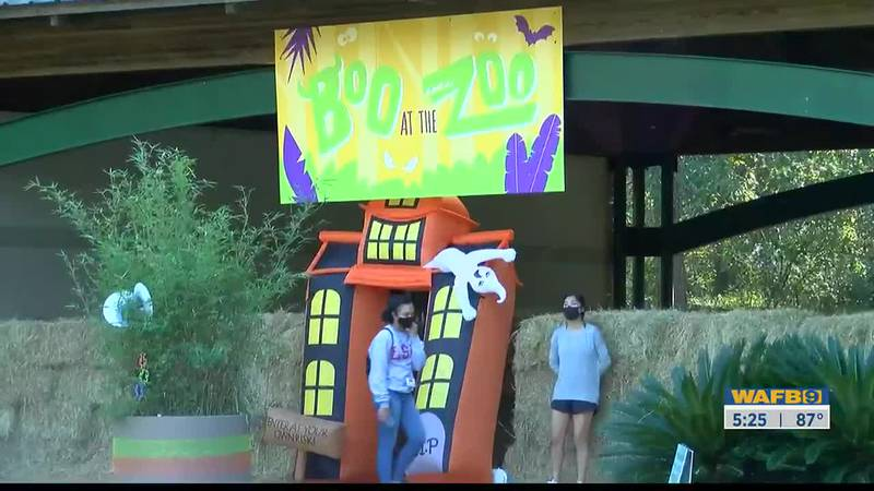 If you're looking for some more family fun this weekend, the 25th annual Boo at the Zoo kicks...