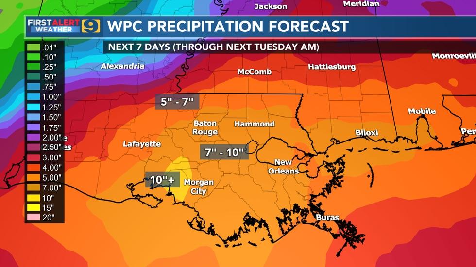 WPC precipitation forecast for next seven days through Tuesday, June 22.