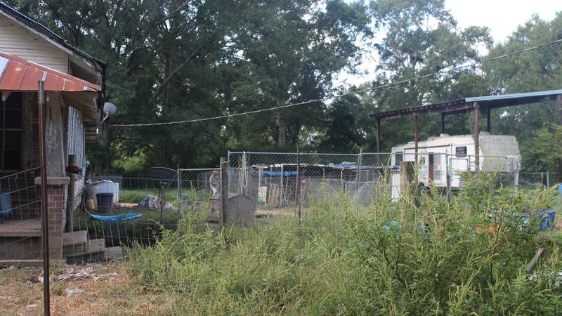 The Northshore Humane Society rescued 50 dogs from a makeshift shelter in rural Louisiana....