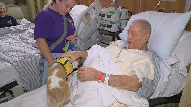 Freddie Carter, a cancer patient, enjoys visits from Milo, a therapy dog.
