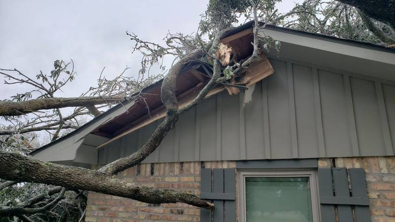 Homeowner's insurance claims