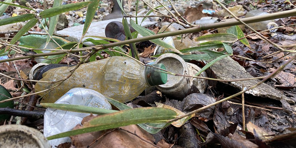 Behind the foliage at LSU's Burden Center hides 81 tons of plastic bottles, beer cans, and...