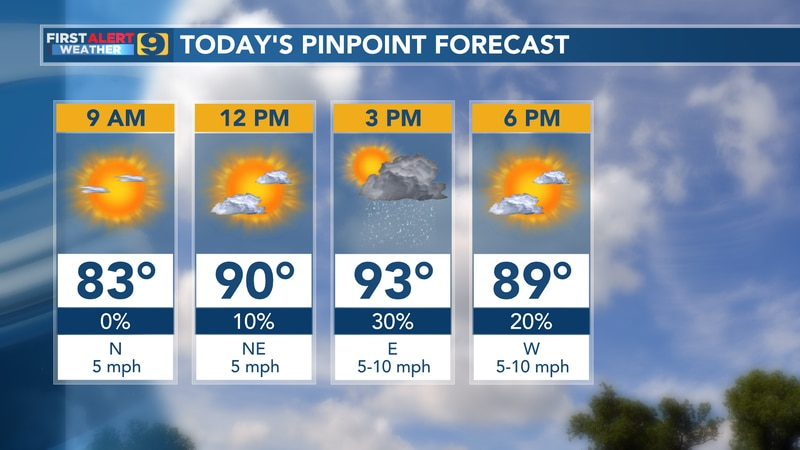 Pinpoint forecast for Tuesday, June 15.
