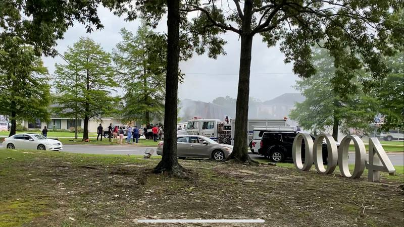 Truck hits tree in Baton Rouge and catches fire.