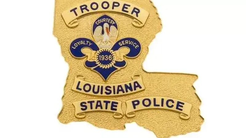 Louisiana State Police say seven people were arrested after an investigation into insurance...