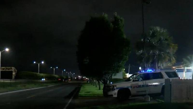 Eight people were shot in New Orleans East early Sunday morning. At least one woman is listed...