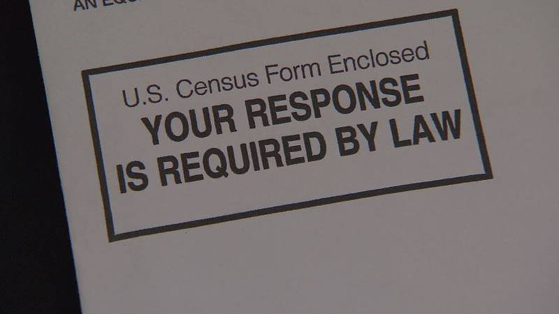 This picture shows a portion of a U.S. Census form from 2010.