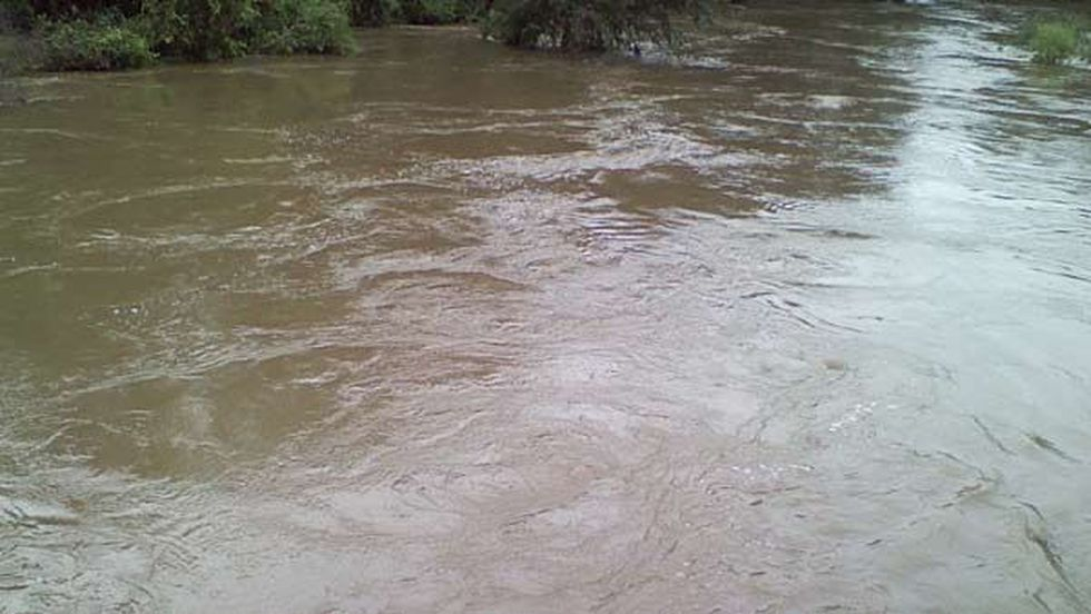 A closer view of the Tangipahoa River in Kentwood