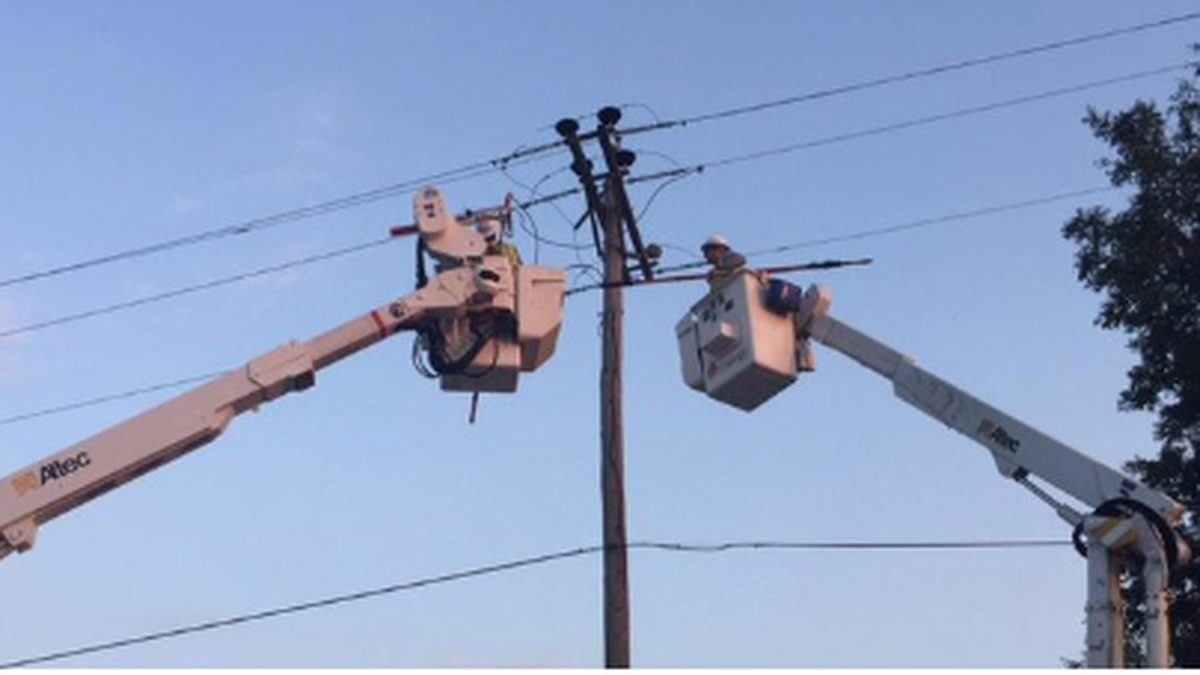 A bird made contact with equipment, causing a power outage for customers in the Marigny area,...