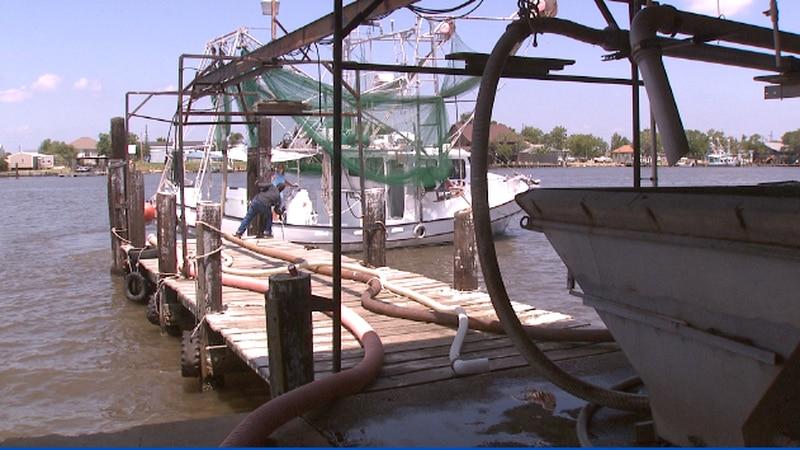 A fishing  boat on Louisiana waters.