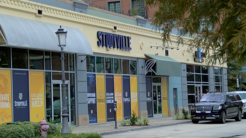 A new start-up, Studyville has opened up for students and provides parents with another option...