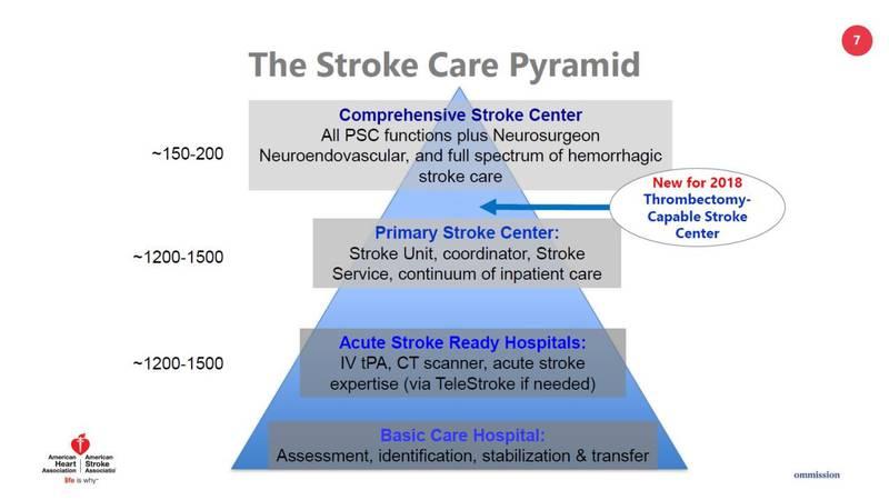 The Stroke Care Pyramid