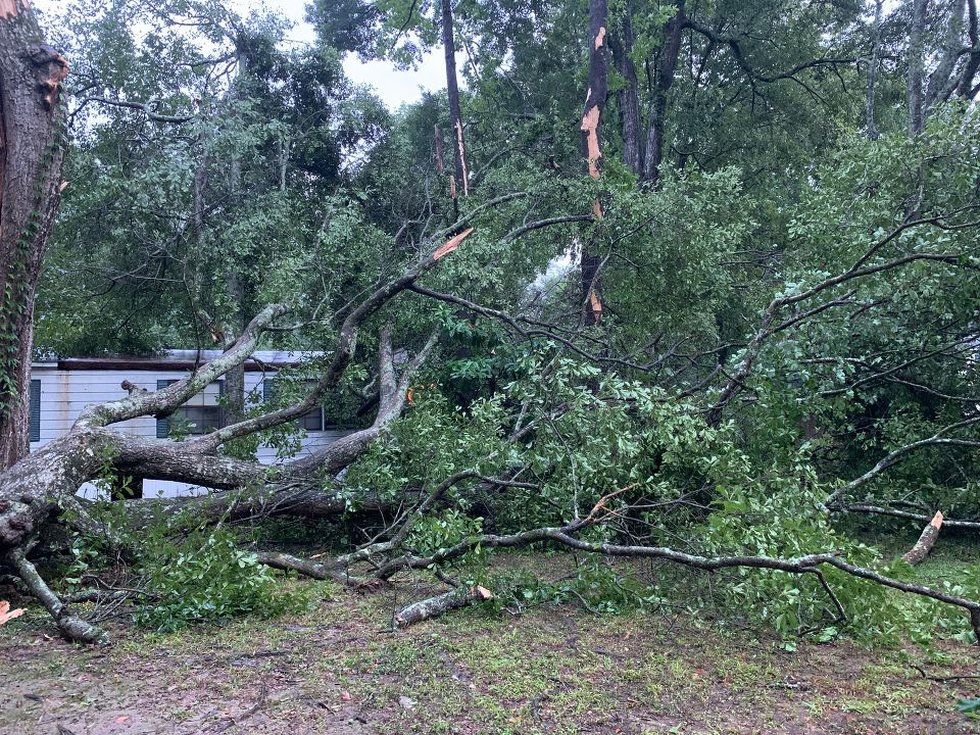 Tree down in Crystal Place mobile home lot in Central, La. due to heavy storms Wednesday, June...