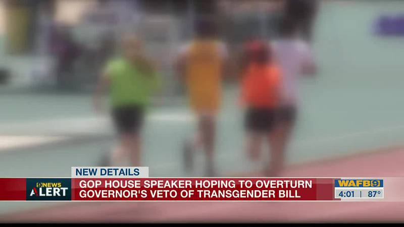 House Speaker Clay Schexnayder said he supports a veto override session in an attempt to...