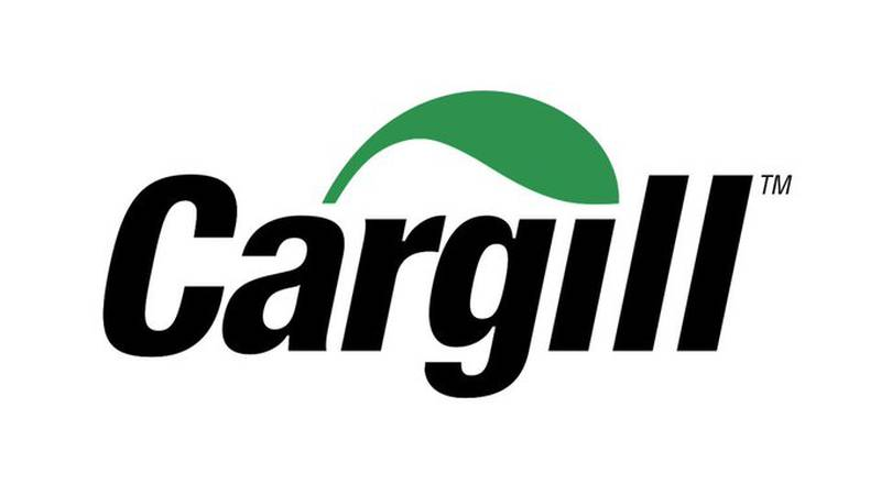 Company representatives for Cargill say the collapse happened on Avery Island during the early...