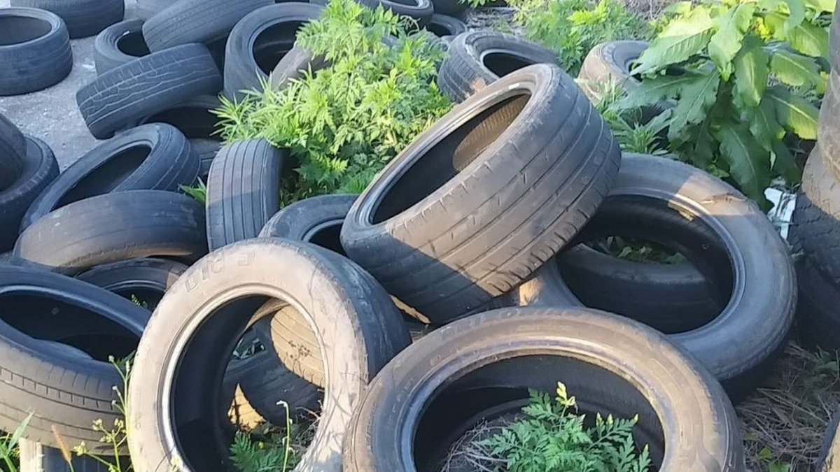 Tires dumped outside the property.