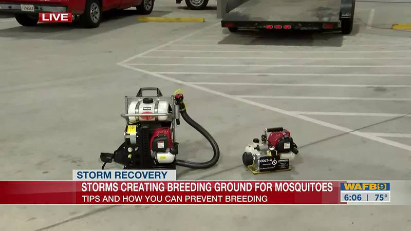 Storms creating breeding ground for mosquitoes